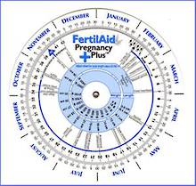 Ovulation & Pregnancy Wheel